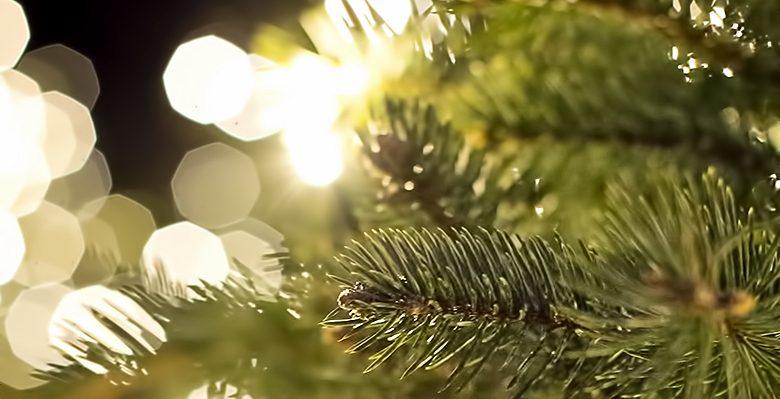 Weihnachten 2017 - LOKALITES